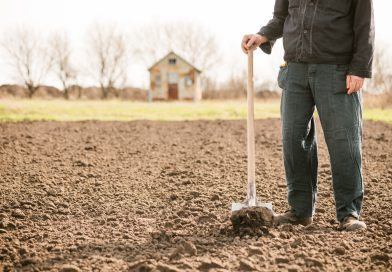 Masz ziemię rolną, masz kłopot